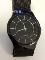 2015 skagen watch